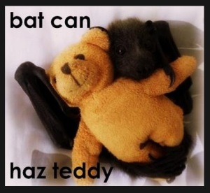 bat haz  teddy