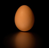 stock-photo-39499812-brown-egg-with-black-background