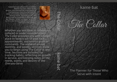 cover version 2 The Collar.jpg